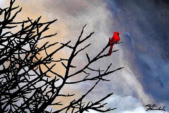free-bird-Theepachelvan-poem-Tamil-Eelam